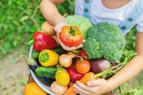 eating fresh vegetables affect the body?